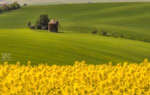Pogled z rumenega polja - Chvalkovice