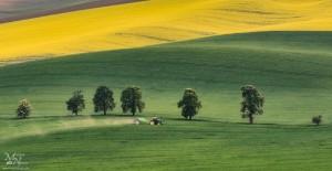 Traktor - med valovitimi polji