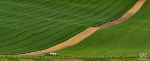 Traktor na Moravskem valovitem polju