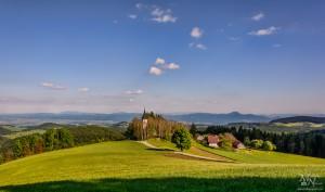 Bojtina - pomlad-poletje