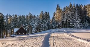 V snegu, soncu in sencah