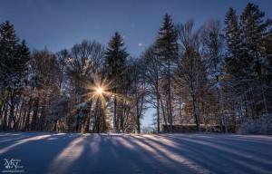 V snegu - s sončno zvezdo