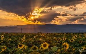 Pred sončnim zahodom, v ozadju Pohorje