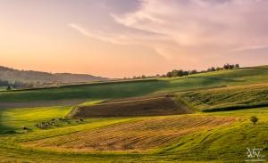 Večerni pogled, delo na polju, Zg.Partinje