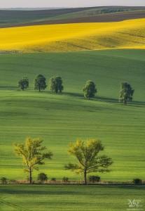 Jutranje sonce in sence, Južna Moravska