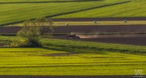 Pomladno delo na polju, Vinička vas