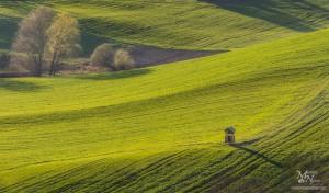 Pomladni travnik, Zg. Gasteraj