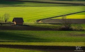 Med travniki in njivami, Vinička vas