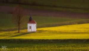 Osamljena kapela in drevo, Jurovski dol