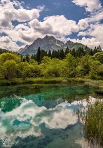 Zelenci, jezero
