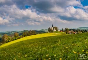 Pomlad na Pohorju, Bojtina