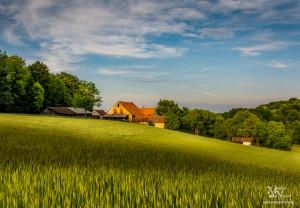 Zelena pomlad na polju, Zgornje Partinje