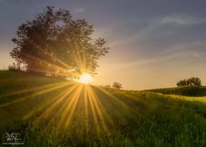 Sončna zvezda-med hribom in drevesom, Zg.Porčič