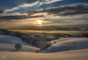 Jutranji pogled na Dravsko polje