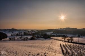 Sneg v Slovenskih goricah